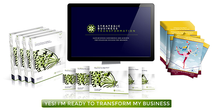 Strategic Business Transformation Program